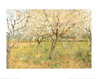 https://imgc.artprintimages.com/img/print/orchard-in-blossom_u-l-e772b0.jpg?p=0