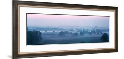 Orchards at morning, Putley, Herefordshire, England--Framed Photographic Print