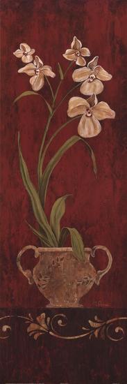 Orchid Allure I-Maria Donovan-Art Print