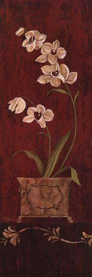 Orchid Allure II-Maria Donovan-Art Print