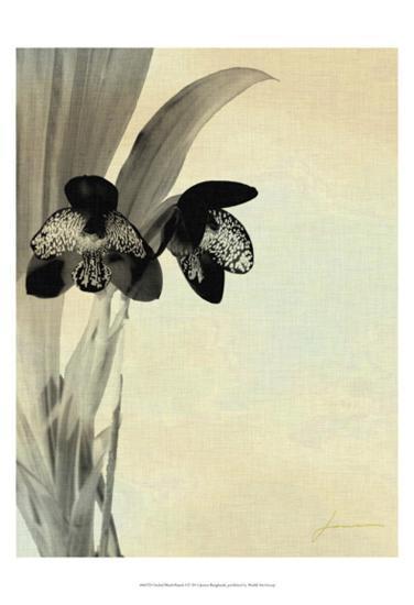Orchid Blush Panels I-James Burghardt-Art Print