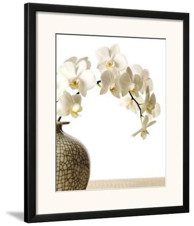 Orchid Branch-Stephane De Bourgies-Framed Art Print