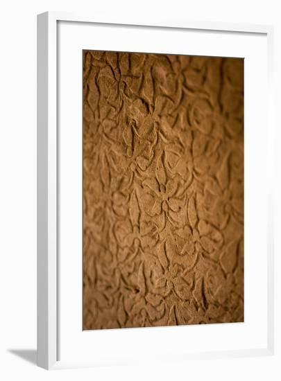 Orchid Carving I-Erin Berzel-Framed Photographic Print