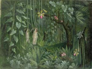Orchid Hunters of Brazil, 1950 (oil on canvas)