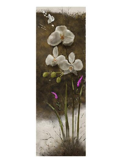 Orchid I-Rick Novak-Art Print