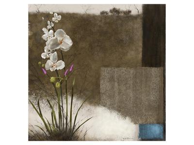 https://imgc.artprintimages.com/img/print/orchid-iii_u-l-f74iy70.jpg?p=0