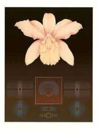 https://imgc.artprintimages.com/img/print/orchid-matrix-i_u-l-erxpz0.jpg?p=0
