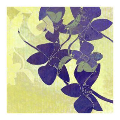 Orchid Shadows I-Jan Weiss-Art Print