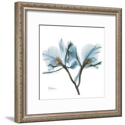 Orchids in Blue-Albert Koetsier-Framed Art Print