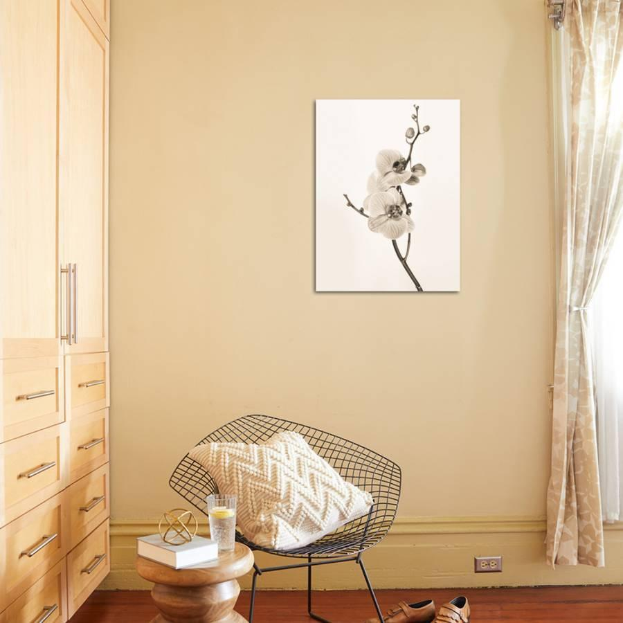 Orchids in Sepia Tones Art Print by Jane Butler | the NEW Art.com
