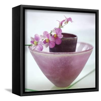 Orchids-H^ Orth-Framed Canvas Print