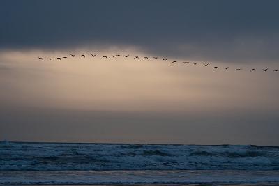 Oregon Coast Sunset 2-Erin Berzel-Photographic Print