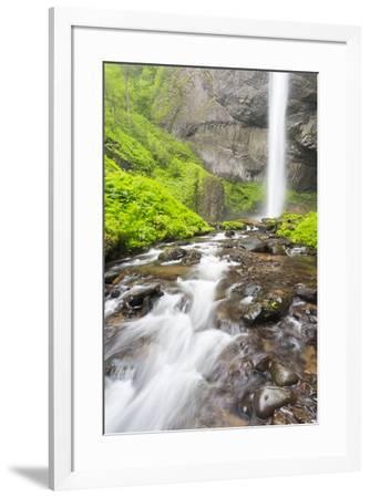 Oregon, Columbia River Gorge National Scenic Area, Latourell Creek and Falls-John & Lisa Merrill-Framed Premium Photographic Print