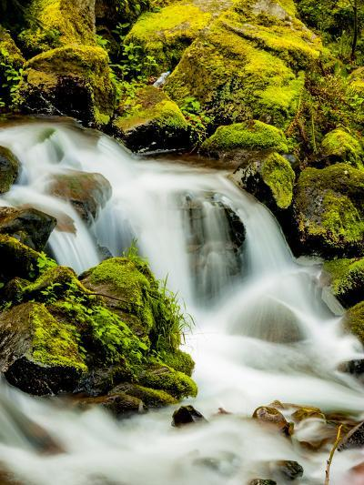 Oregon, Columbia River Gorge Scenic Area, Wahkeena Falls-Richard Duval-Photographic Print