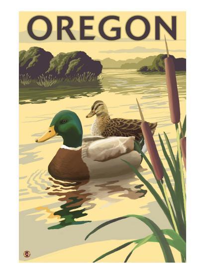 Oregon, Mallard Ducks-Lantern Press-Art Print