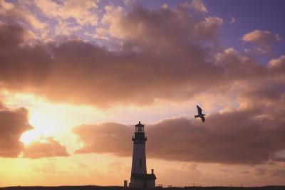 Oregon, United States of America; Yaquina Head Lighthouse at Sunset-Design Pics Inc-Photographic Print