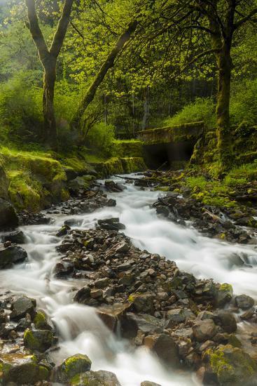 Oregon, Wahkeena Falls. Located Along I-84, the Columbia River Gorge-Richard Duval-Photographic Print