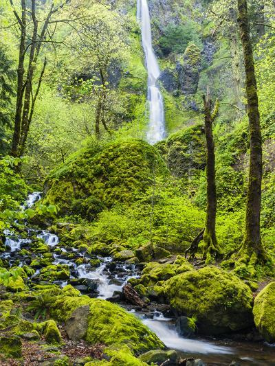 Oregon, Wahkeena Falls. Located Along I-84, the Columbia River Gorge-Richard Duval-Photographic Print