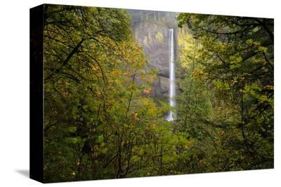 Oregon Waterfall-Jason Savage-Stretched Canvas Print