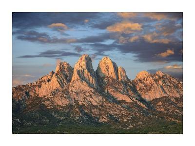 Organ Mountains near Las Cruces, New Mexico-Tim Fitzharris-Art Print