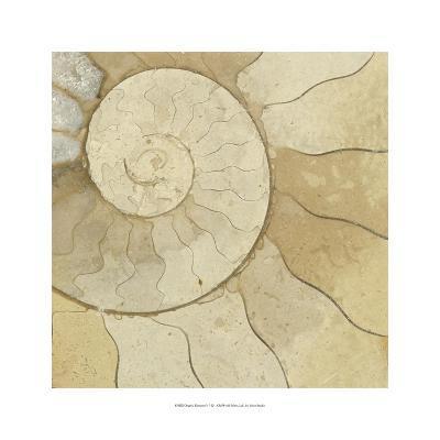 Organic Elements V-Vision Studio-Art Print