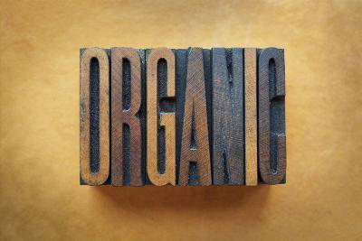 Organic-enterlinedesign-Photographic Print