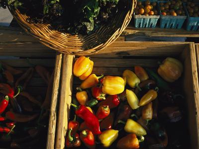 Organically-Grown Peppers are Featured at the Cary Farmers Market-Stephen Alvarez-Photographic Print