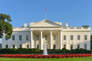 The White House - Washington Dc, United States by Orhan