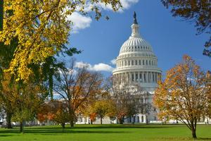 United States Capitol Building in Washington Dc, during Fall Season by Orhan