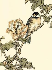 Oriental Bird on Branch I