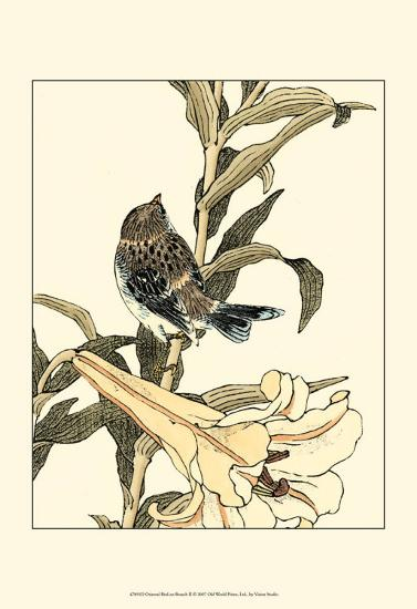 Oriental Bird on Branch II--Art Print