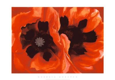 https://imgc.artprintimages.com/img/print/oriental-poppies-c-1928_u-l-e79qj0.jpg?p=0