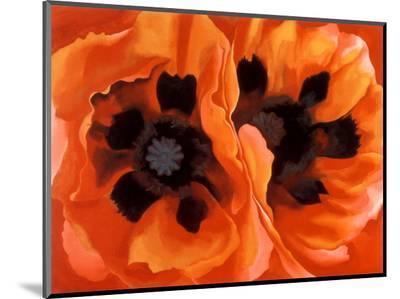 Oriental Poppies-Georgia O'Keeffe-Mounted Print