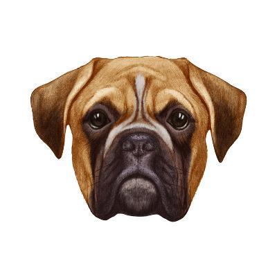 Original Drawing Of Boxer Dog Isolated On White Background Art
