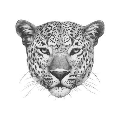 Original Drawing of Leopard. Isolated on White Background.-victoria_novak-Art Print