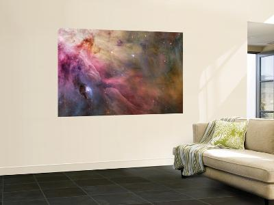 Orion Nebula--Wall Mural