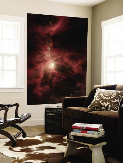 Orion's Inner Beauty--Wall Mural