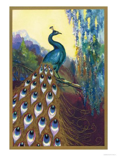 Ornamental Peacock--Giclee Print