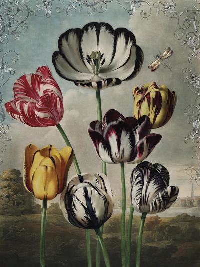 Ornamental - Thierry-Stephanie Monahan-Giclee Print