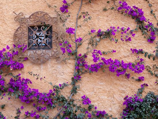 Ornamental Window, San Miguel De Allende, Mexico-Alice Garland-Photographic Print