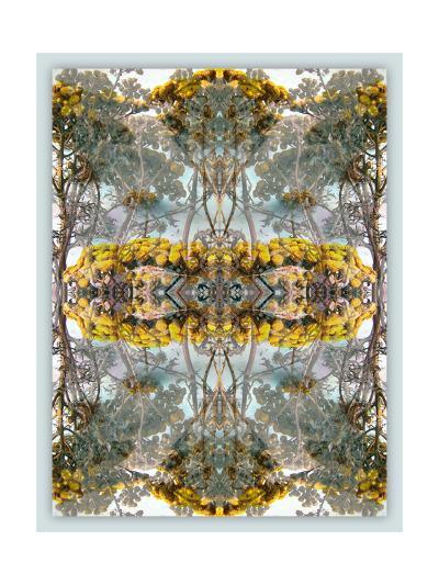 Ornaments Of Earth V-Alaya Gadeh-Art Print