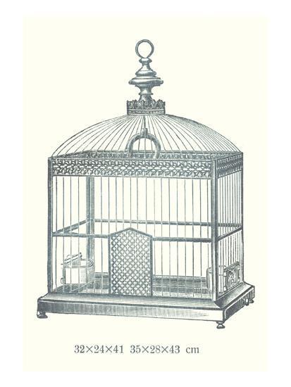 Ornate Black Bird Cage C--Art Print