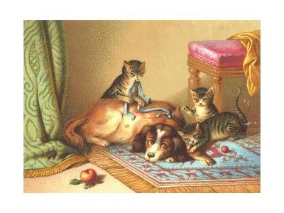 Ornery Kittens with Resting Dog--Art Print