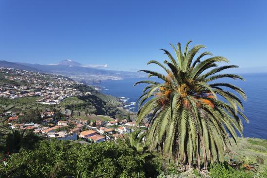 Orotava Valley to the North Coast and Puerto De La Cruz Und Den Teide, Canary Islands, Spain-Markus Lange-Photographic Print