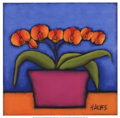 https://imgc.artprintimages.com/img/print/orquidia-laranja_u-l-f8njyb0.jpg?p=0