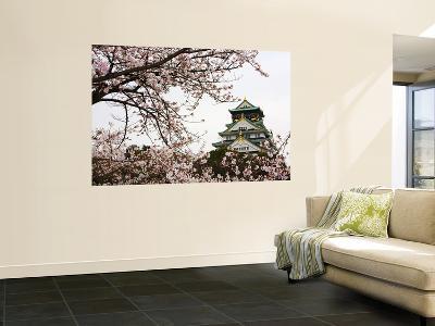 Osaka Castle with Cherry Blossoms-John Banagan-Giant Art Print