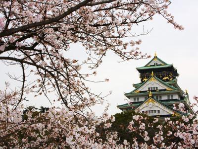 https://imgc.artprintimages.com/img/print/osaka-castle-with-cherry-blossoms_u-l-pxti5m0.jpg?p=0