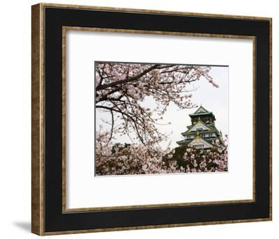 Osaka Castle with Cherry Blossoms-John Banagan-Framed Photographic Print