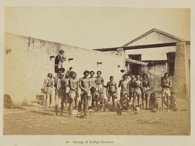 Group of indigo beaters, 1877