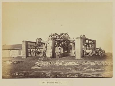 Persian wheel, 1877